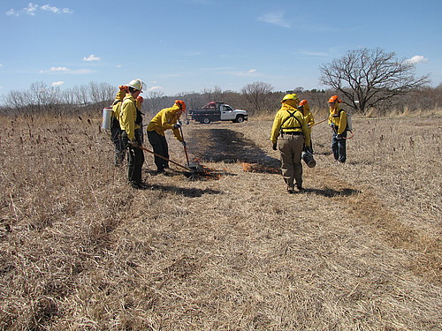 Arb Workers on Firebreak