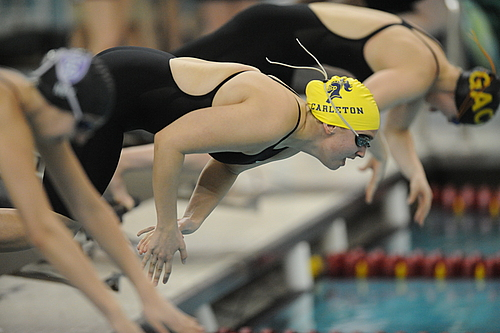 Sophie Pilhofer, Women's Swimming and Diving Action