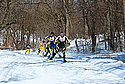 Nordic skiers still compete at Carleton. Photo by Ng Il Shan.