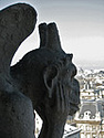 A picture of a contemplative gargoyle in Paris.