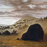 """Buffalo Hunting"" by George Catlin"