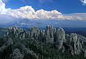 Black Hills (Photo by South Dakota Tourism)