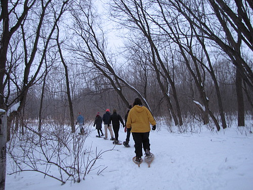 student naturalists go snowshoeing