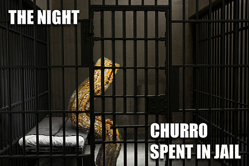 The Night Churro Spent in Jail