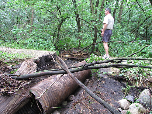 Upper Arb washed out culvert