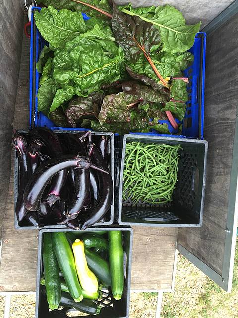 Carleton Farm produce