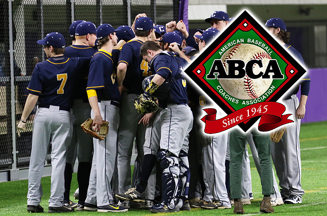 Baseball: ABCA academic award, July 19, 2017