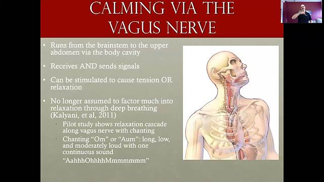 Vagus Nerve Techniques To Calm When Panicked