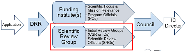 NIH Review Process Image