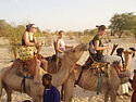 Students on camels