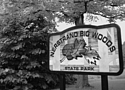 Big Woods State Park faces possible re-zoning for industrial purposes.