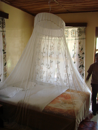 A Mosquito Net Is Over The Bed Energy Health And