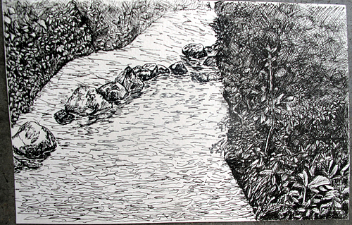 Line Drawing River : Cannon river by talia goldenberg  cowling arboretum