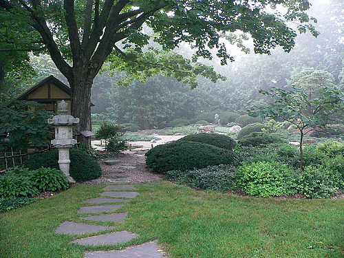 japanese garden in the fog