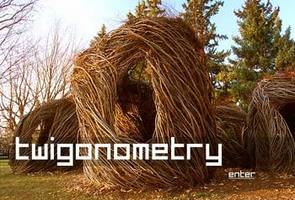 Twigonometry