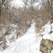 Spring Creek trail in winter.