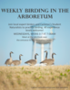 Advertisement for weekly birding