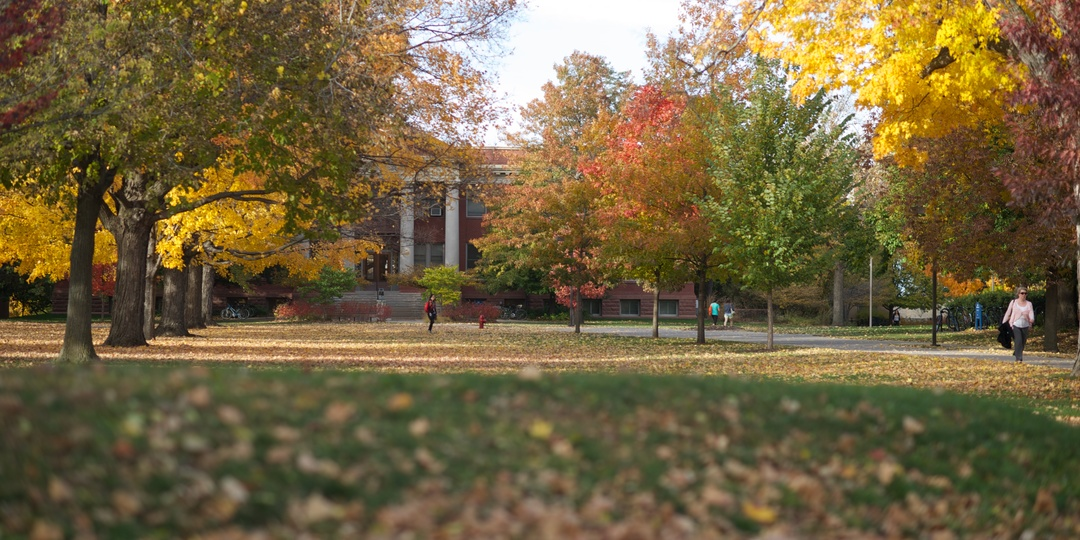 Autumn Campus