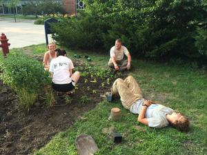 Students take a break from planting basil in Eat the Lawn's new home.