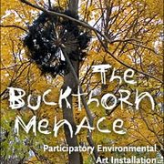 The Buckthorn Menace: Participatory Environmental Art Installation