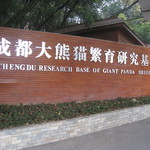 Panda Breeding Center