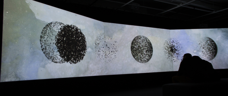 Three projection screens in a dark room displaying images of dark spheres.