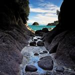 Abel Tasman Park, South Island, New Zealand