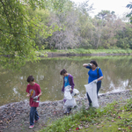 Volunteers work together to pick up litter on the banks of the Cannon River.