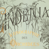 Lindenia: Iconography of Orchids, detail