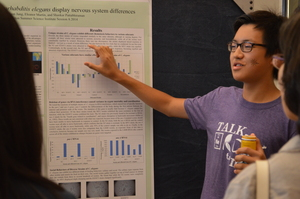 CSSI culminates in a research symposium where students display their work.