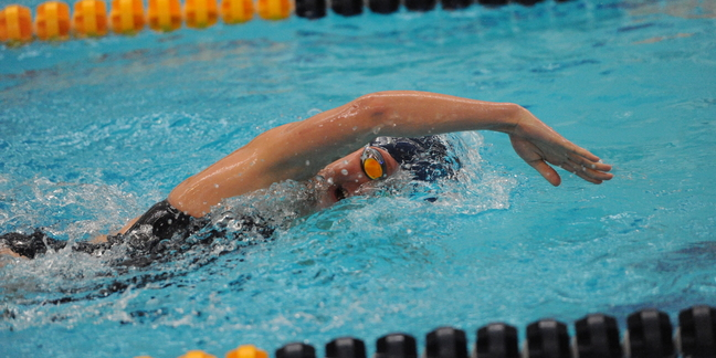 Women 39 S Swimming And Diving At St Olaf College Varsity Athletics Carleton College