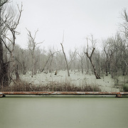Richard Misrach Swamp and Pipeline, Geismar, Louisiana, 1998
