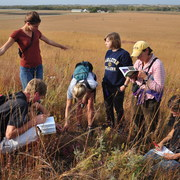 Student Naturalists examining gopher holes in the McKnight Prairie.