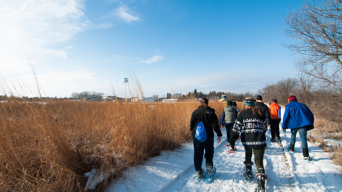 Snowshoeing in the Arb, 2015