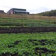 A placard image for media work Farm Bike Tour