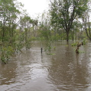 2010 Flooding in Lower Arb by Matt Elbert