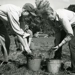 Tree Planting from the Cowling Arboretum Archives