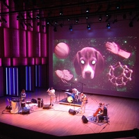Anna Meredith & band, in silver costumes, perform before a screen projecting a dog and other items.