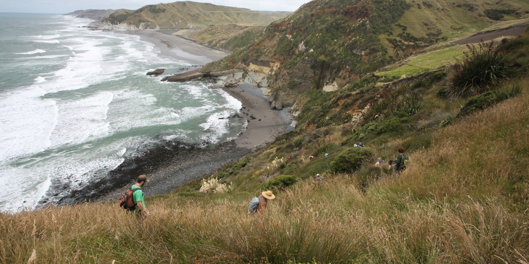 Study Abroad in New Zealand | Study in New Zealand ...