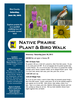 June 30, 2012 Prairie Walk Poster