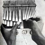 The African Mbira
